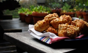 BeeCave_EatitKid_cheesy apple biscuits