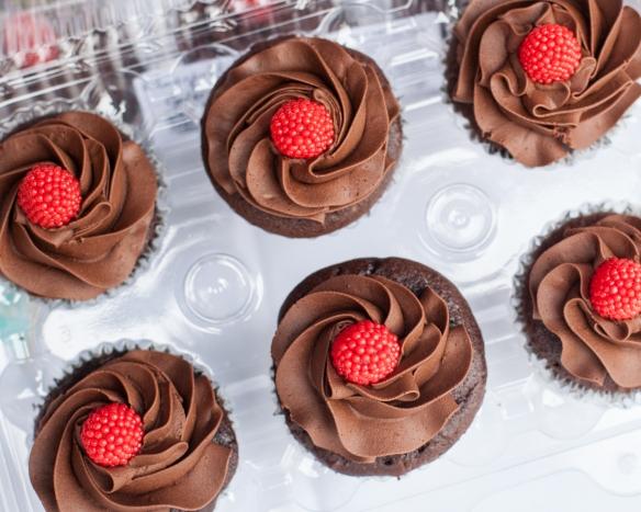 austin bakes cupcakes 2